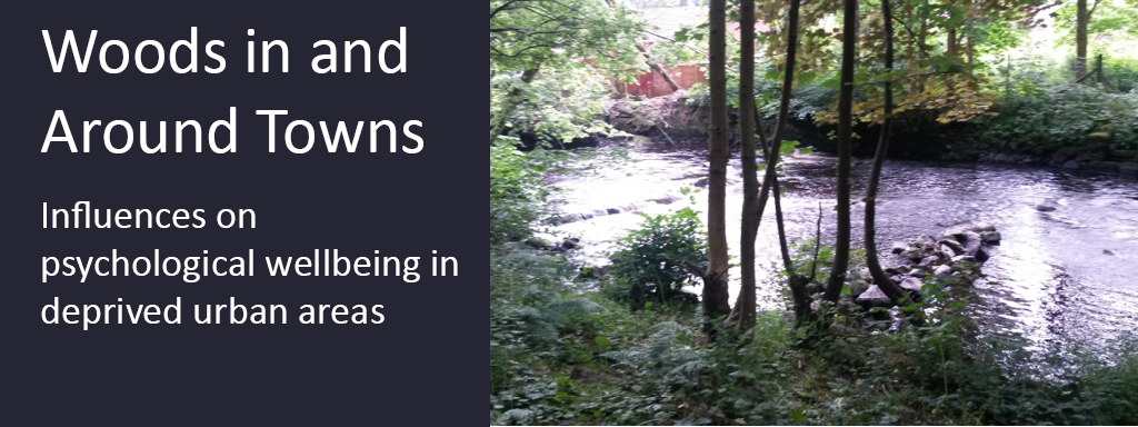 Photo linking through to information about the research project, Woods In and Around Towns